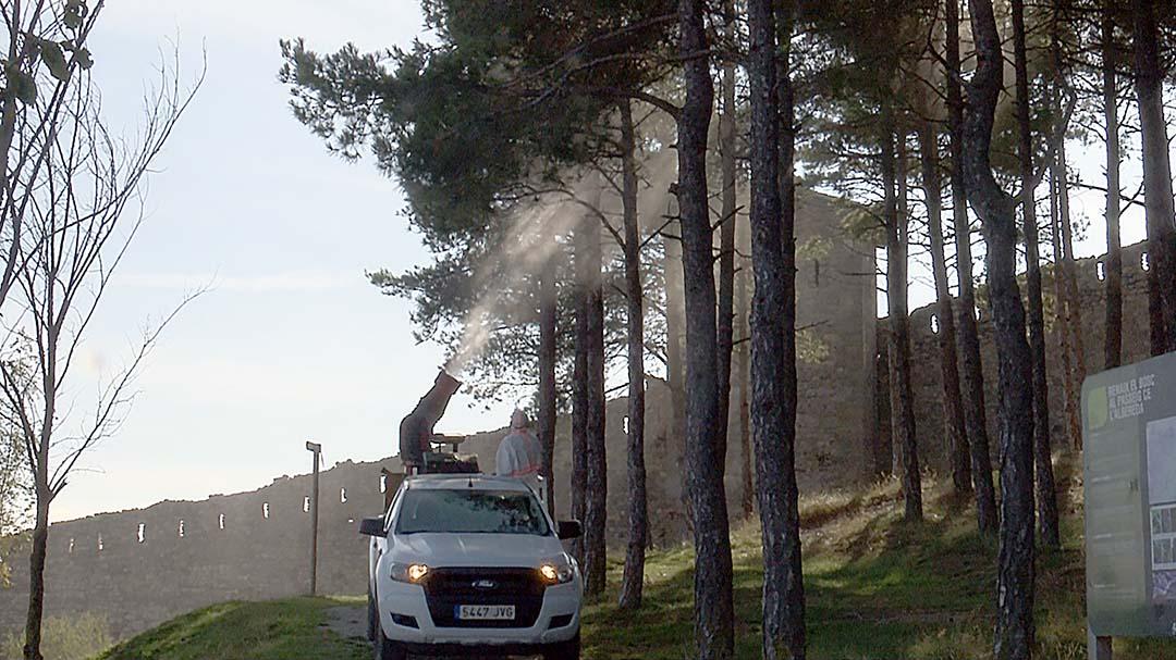 S'ha fumigat l'Alameda per a erradicar la plaga de la processionària