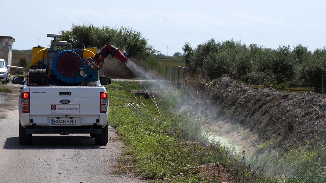 Diputació intensifica els tractaments contra el mosquit tigre a la província