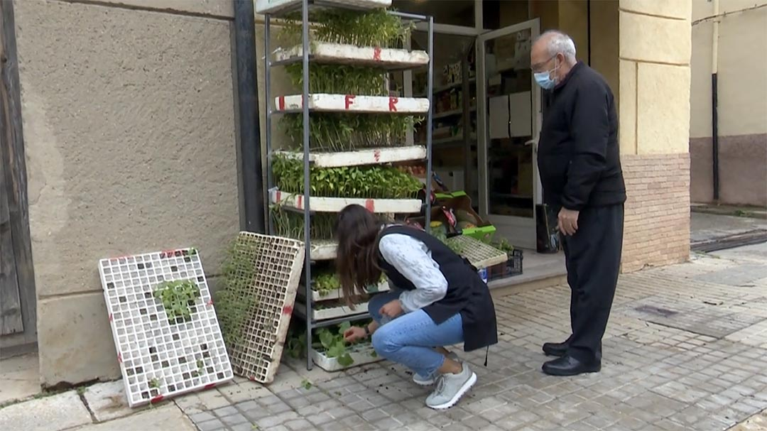 S'incrementa notablement la venda de planter
