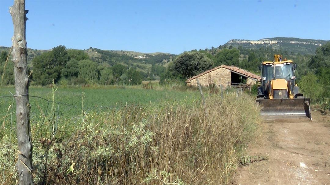 Morella neteja diverses pistes forestals