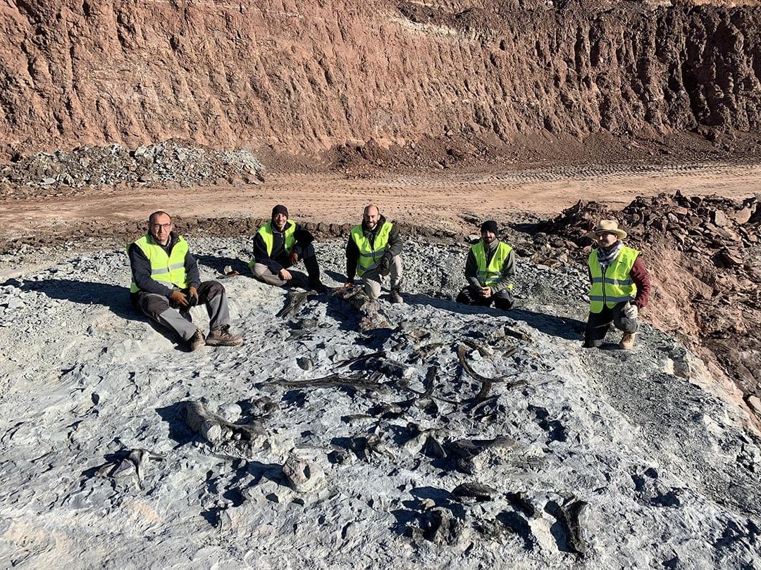 Es troben noves restes de dinosaures a les mines d'argila de Morella
