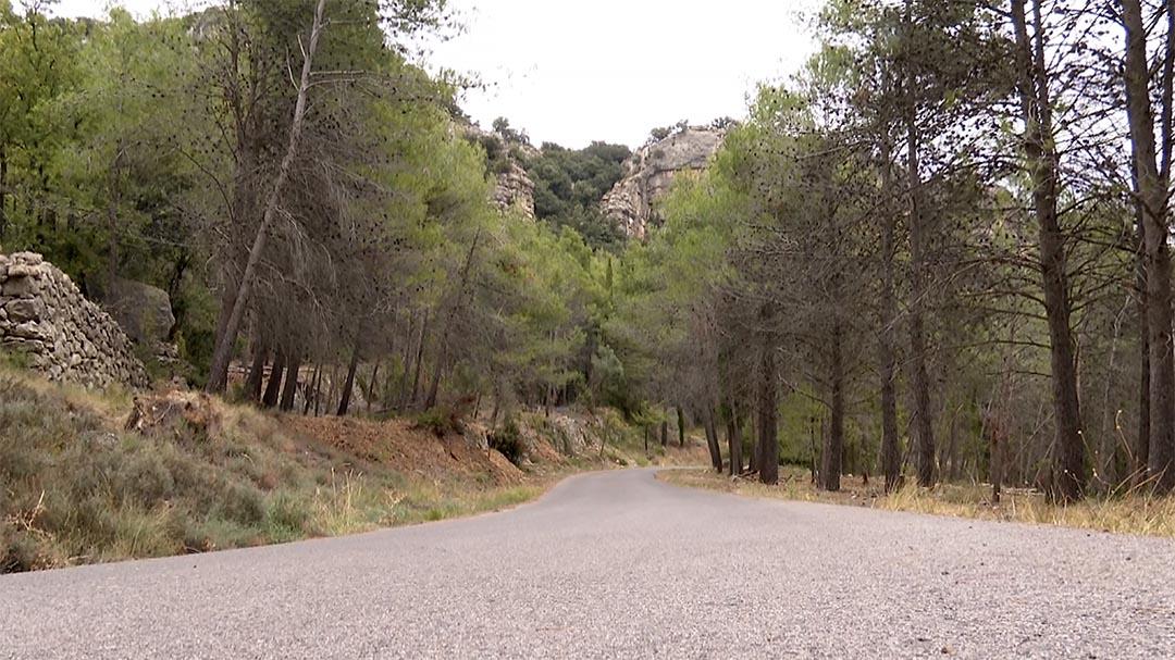 Vallibona millora 2,6 km del camí rural cap a Rossell