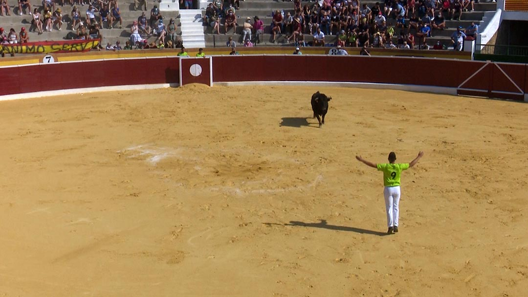 Dos anys després, tornen els bous a Vilafranca