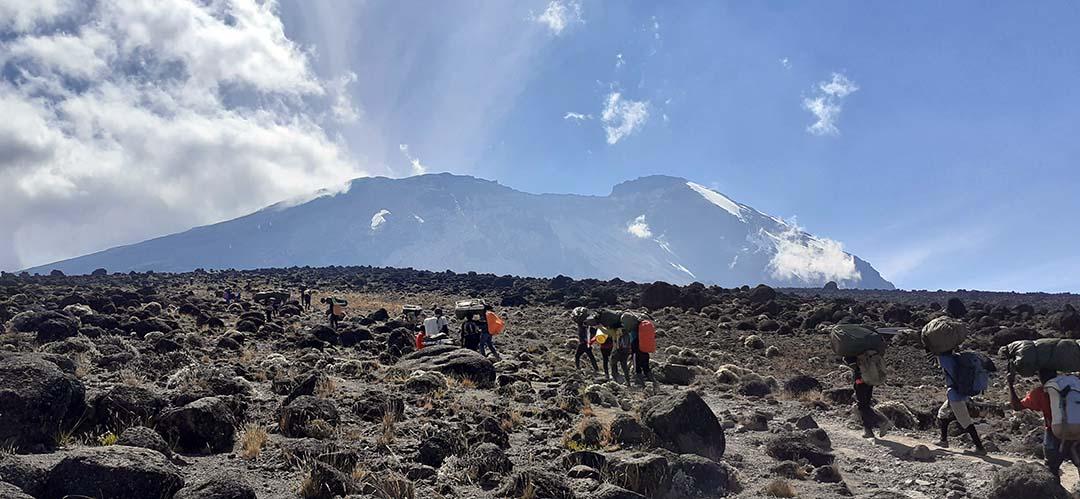 Tres cinctorrans al cim més alt d'Àfrica