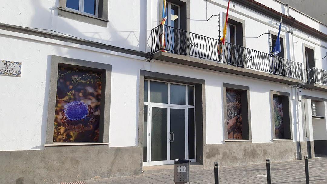 Benicarló s'ambienta amb imatges commemoratives de la Festa de la Carxofa