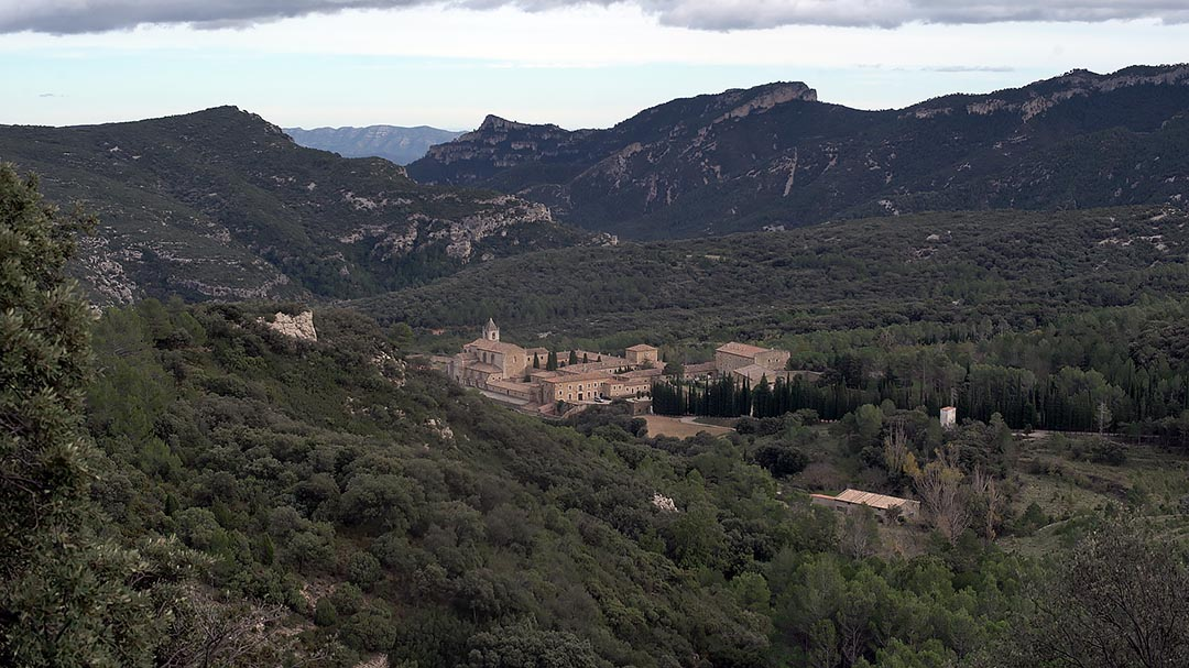 Declaren reserva de fauna silvestre el monestir de Santa Maria