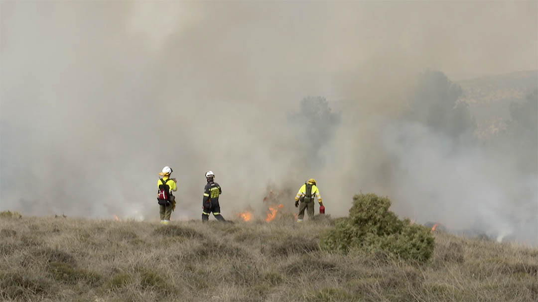Cremes controlades per a renovar pastures als Ports