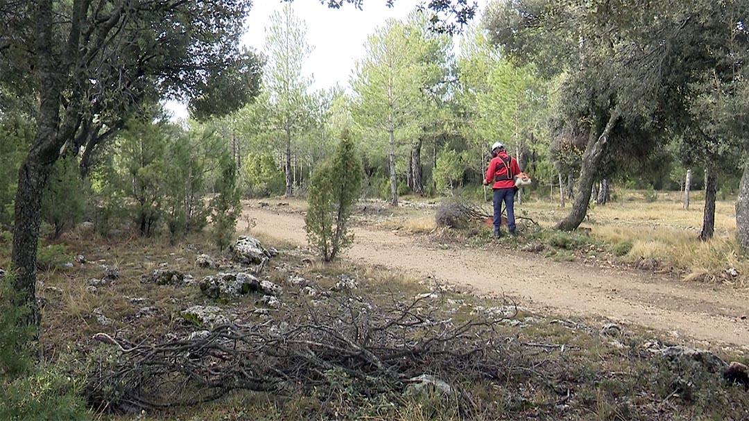 6 mesos de feina a Vilafranca amb el Plan Emerge