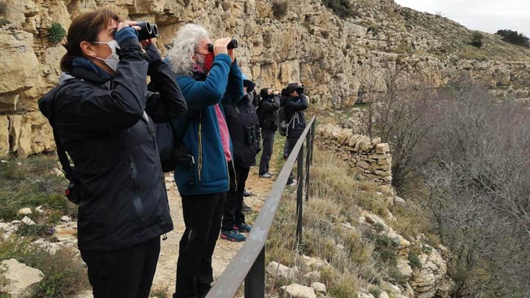 Ares acull una jornada d'observació d'aus amb un gran nombre d'albiraments
